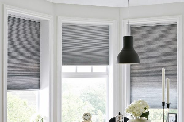 blackout iron blinds