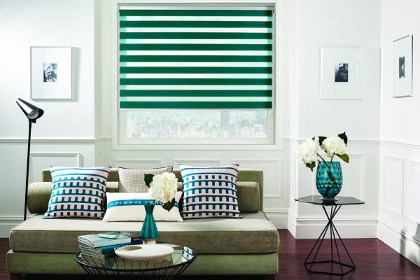 Luovolite night and day blinds jade